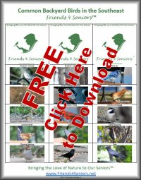 Free copy of Common Backyard Birds in the Southeast